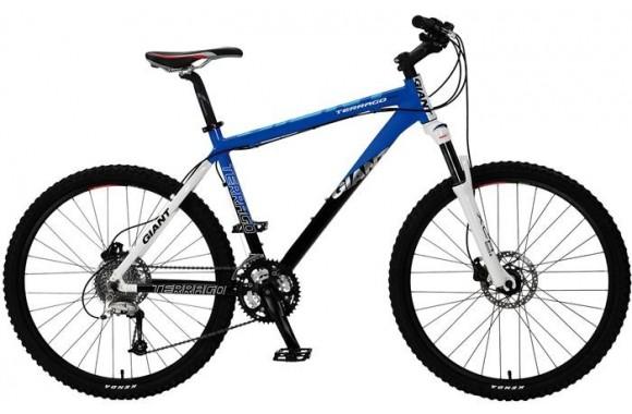 Горный велосипед Giant Terrago Disc (2010)