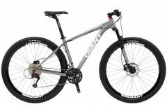 Горный велосипед Giant XtC 29er 2 (2010)
