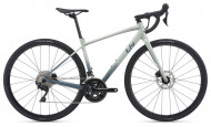Велосипед Giant Giant Avail AR 1 (2021) (2021)